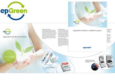Brochure and Logo